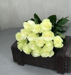 Цветы шары доставка уфа, розы 40 см в букете 101 штук